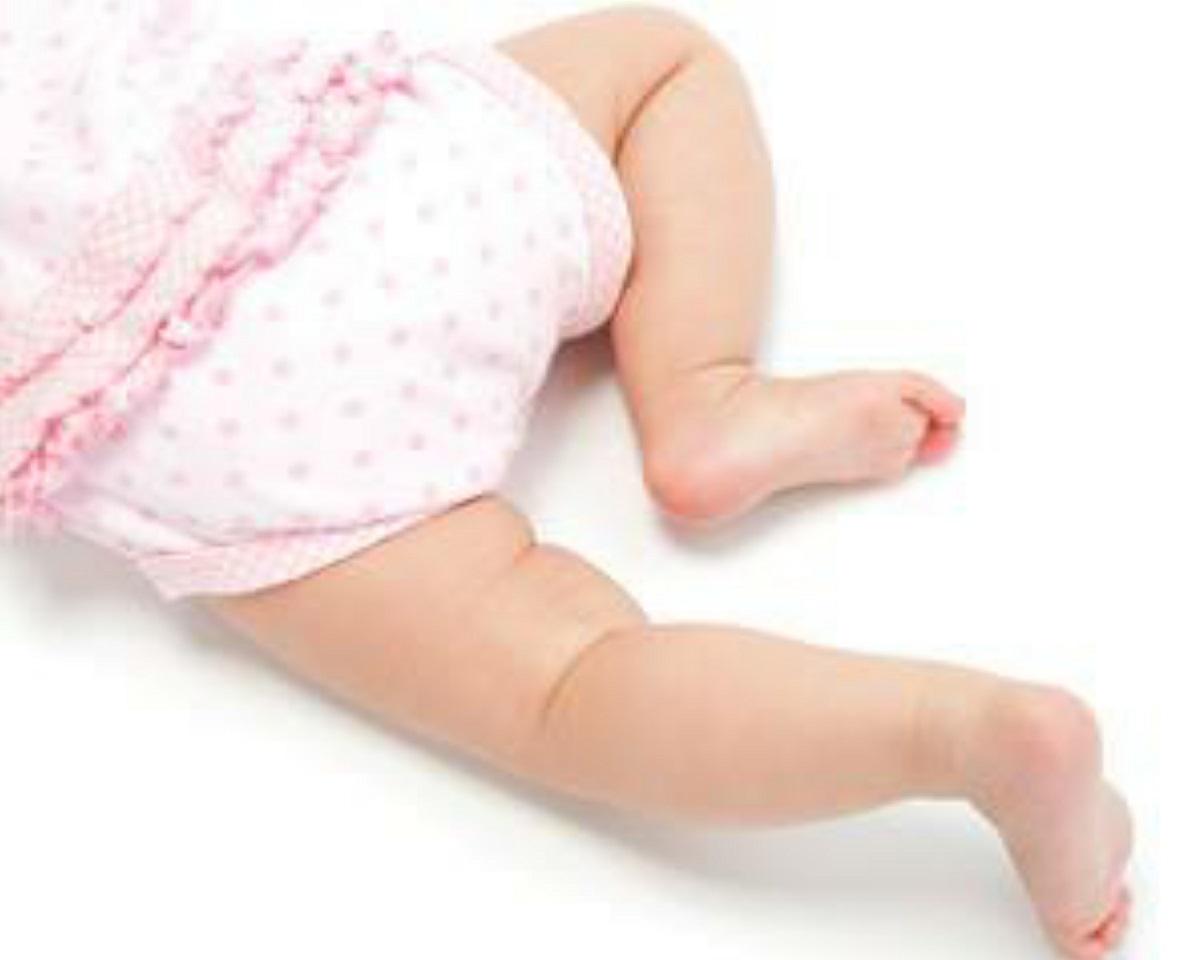 Bauer Crawling